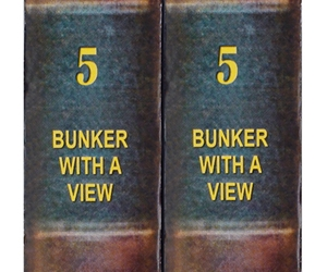 SDD - Bunker with a View - Chapter 5